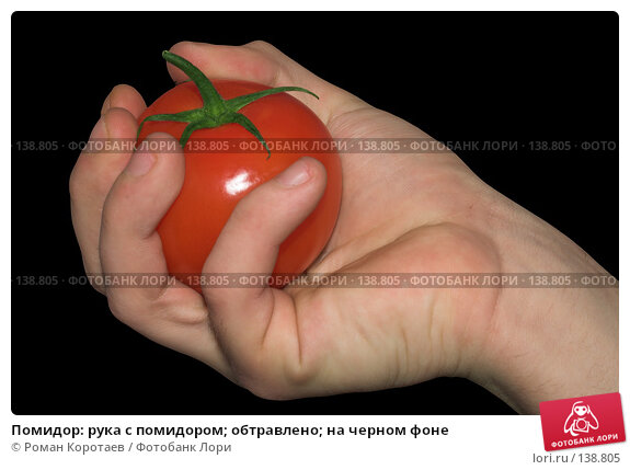 Помидор: рука с помидором; обтравлено; на черном фоне, фото № 138805, снято 2 декабря 2007 г. (c) Роман Коротаев / Фотобанк Лори