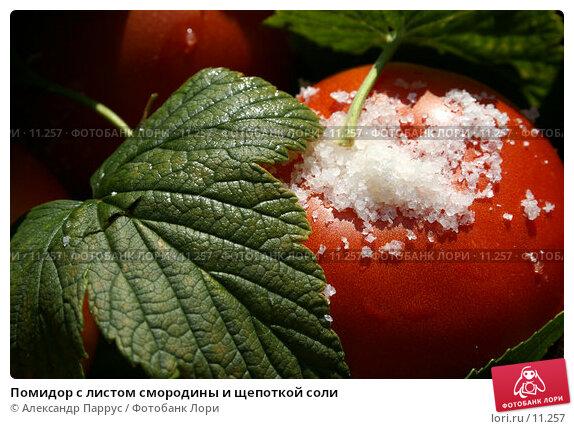 Помидор с листом смородины и щепоткой соли, фото № 11257, снято 27 августа 2006 г. (c) Александр Паррус / Фотобанк Лори