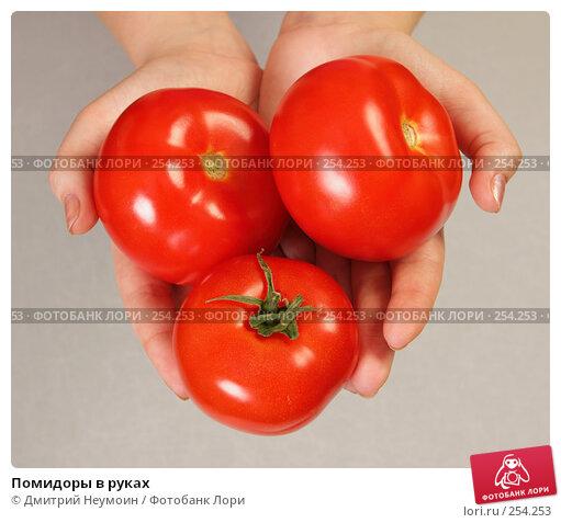 Помидоры в руках, эксклюзивное фото № 254253, снято 5 апреля 2008 г. (c) Дмитрий Неумоин / Фотобанк Лори