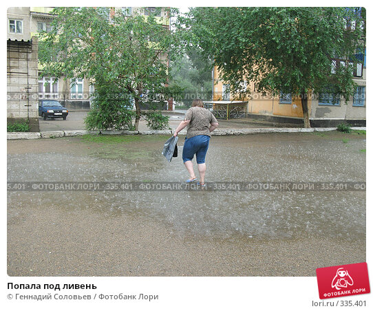 Попала под ливень, фото № 335401, снято 23 июня 2008 г. (c) Геннадий Соловьев / Фотобанк Лори