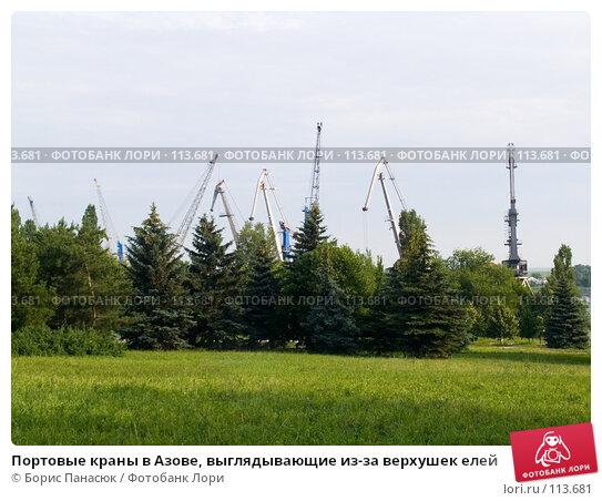 Портовые краны в Азове, выглядывающие из-за верхушек елей, фото № 113681, снято 12 июня 2006 г. (c) Борис Панасюк / Фотобанк Лори