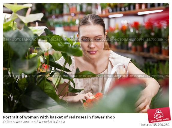 Portrait of woman with basket of red roses in flower shop. Стоковое фото, фотограф Яков Филимонов / Фотобанк Лори