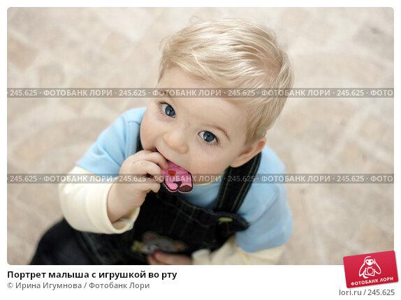 Портрет малыша с игрушкой во рту, фото № 245625, снято 15 марта 2008 г. (c) Ирина Игумнова / Фотобанк Лори