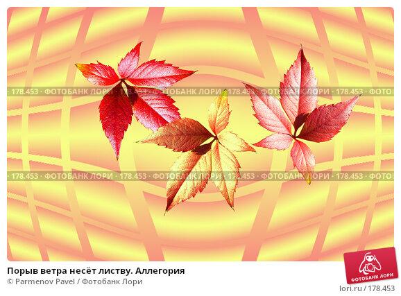 Порыв ветра несёт листву. Аллегория, фото № 178453, снято 2 января 2008 г. (c) Parmenov Pavel / Фотобанк Лори