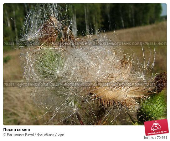 Посев семян, фото № 70661, снято 27 августа 2005 г. (c) Parmenov Pavel / Фотобанк Лори