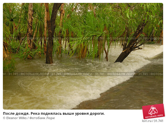 После дождя. Река поднялась выше уровня дороги., фото № 31741, снято 15 апреля 2007 г. (c) Eleanor Wilks / Фотобанк Лори