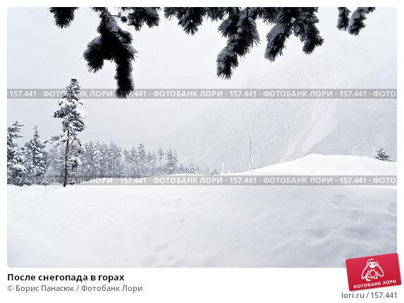После снегопада в горах, фото № 157441, снято 13 декабря 2007 г. (c) Борис Панасюк / Фотобанк Лори