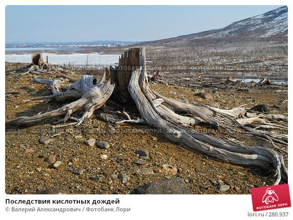 Последствия кислотных дождей, фото № 280937, снято 2 мая 2008 г. (c) Валерий Александрович / Фотобанк Лори
