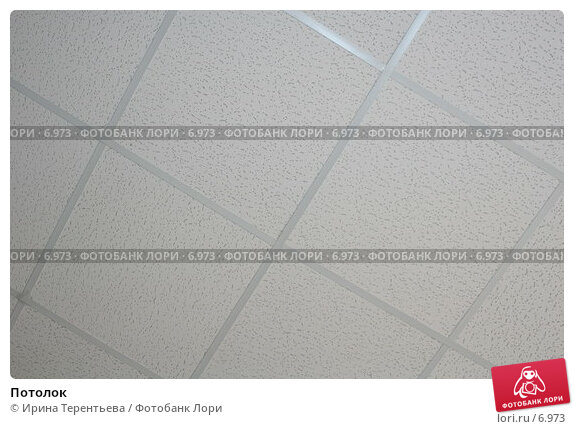 Потолок, эксклюзивное фото № 6973, снято 6 августа 2005 г. (c) Ирина Терентьева / Фотобанк Лори