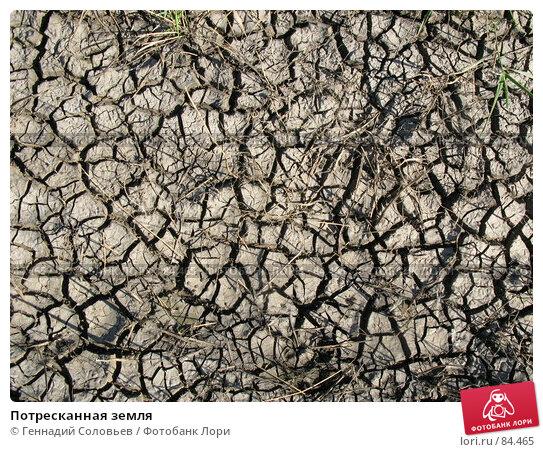 Потресканная земля, фото № 84465, снято 3 сентября 2007 г. (c) Геннадий Соловьев / Фотобанк Лори