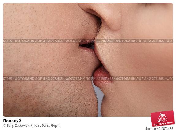 Купить «Поцелуй», фото № 2207465, снято 31 января 2010 г. (c) Serg Zastavkin / Фотобанк Лори