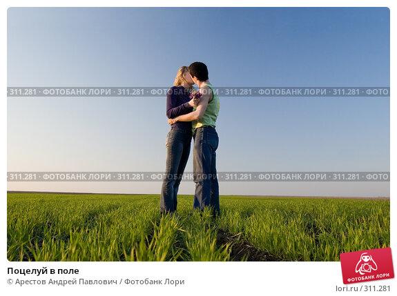 Купить «Поцелуй в поле», фото № 311281, снято 12 апреля 2008 г. (c) Арестов Андрей Павлович / Фотобанк Лори