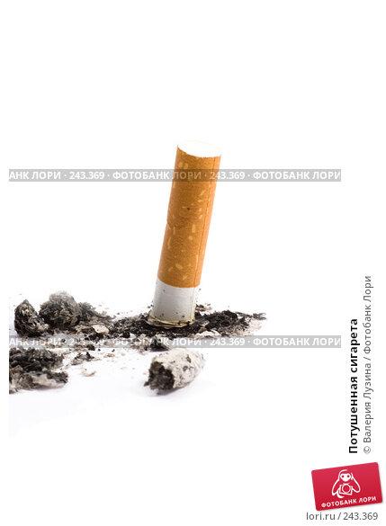 Потушенная сигарета, фото № 243369, снято 24 марта 2008 г. (c) Валерия Потапова / Фотобанк Лори