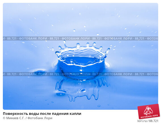 Купить «Поверхность воды после падения капли», фото № 88721, снято 29 июля 2007 г. (c) Минаев С.Г. / Фотобанк Лори