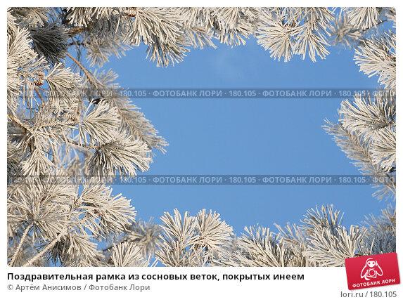 Купить «Поздравительная рамка из сосновых веток, покрытых инеем», фото № 180105, снято 14 января 2008 г. (c) Артём Анисимов / Фотобанк Лори