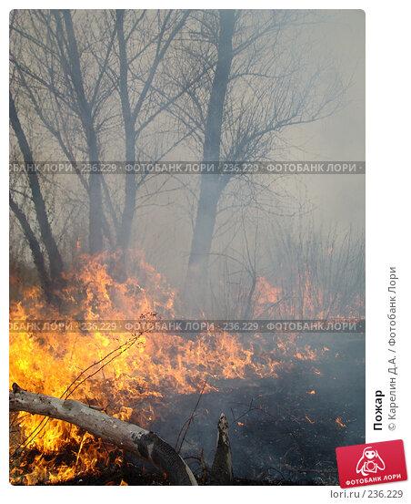 Купить «Пожар», фото № 236229, снято 29 марта 2008 г. (c) Карелин Д.А. / Фотобанк Лори
