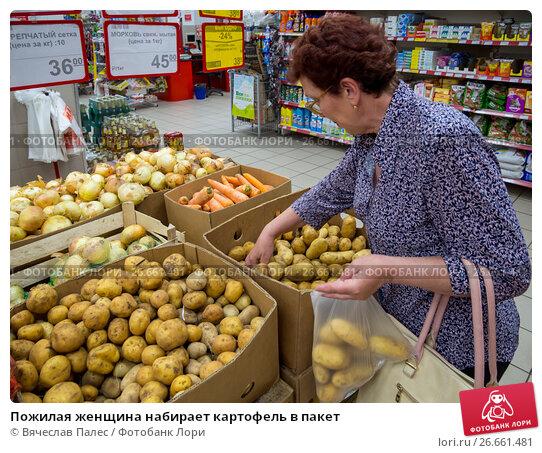 Пожилая женщина набирает картофель в пакет (2017 год). Редакционное фото, фотограф Вячеслав Палес / Фотобанк Лори