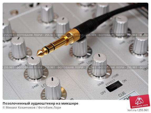 Позолоченный аудиоштекер на микшере, фото № 255961, снято 18 апреля 2008 г. (c) Михаил Коханчиков / Фотобанк Лори