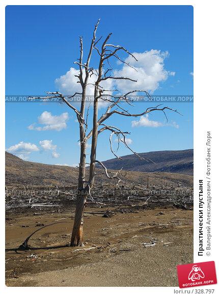 Практически пустыня, фото № 328797, снято 15 июня 2008 г. (c) Валерий Александрович / Фотобанк Лори