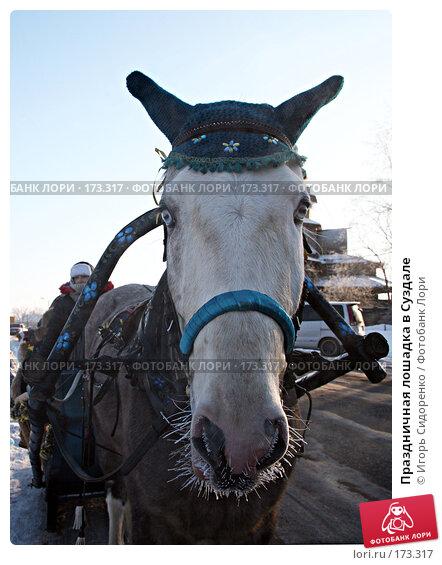 Праздничная лошадка в Суздале, фото № 173317, снято 6 января 2008 г. (c) Игорь Сидоренко / Фотобанк Лори