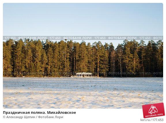 Купить «Праздничная поляна. Михайловское», эксклюзивное фото № 177653, снято 5 января 2008 г. (c) Александр Щепин / Фотобанк Лори