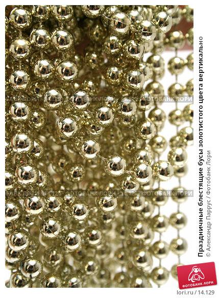 Купить «Праздничные блестящие бусы золотистого цвета вертикально», фото № 14129, снято 19 ноября 2006 г. (c) Александр Паррус / Фотобанк Лори