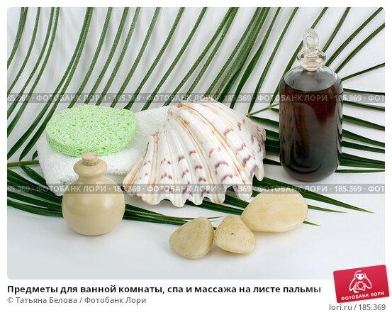 Предметы для ванной комнаты, спа и массажа на листе пальмы, фото № 185369, снято 14 января 2008 г. (c) Татьяна Белова / Фотобанк Лори