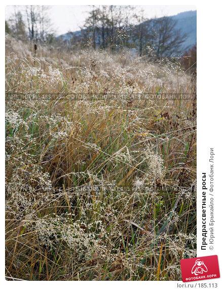 Предрассветные росы, фото № 185113, снято 5 октября 2007 г. (c) Юрий Брыкайло / Фотобанк Лори