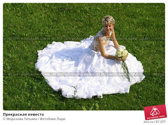 Прекрасная невеста, фото № 57377, снято 19 августа 2006 г. (c) Морозова Татьяна / Фотобанк Лори