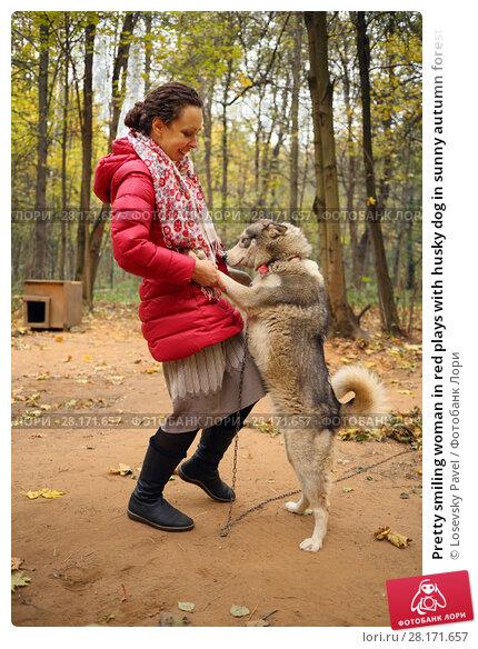 Купить «Pretty smiling woman in red plays with husky dog in sunny autumn forest», фото № 28171657, снято 18 октября 2015 г. (c) Losevsky Pavel / Фотобанк Лори