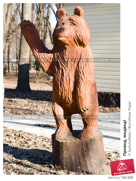 Превед, медвед!, фото № 189585, снято 28 мая 2017 г. (c) SummeRain / Фотобанк Лори