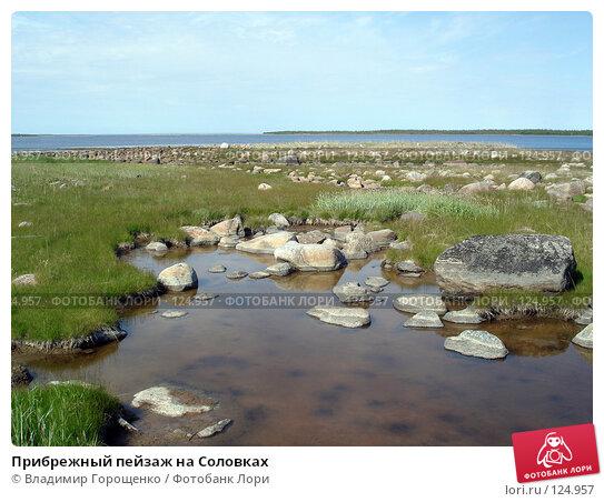 Прибрежный пейзаж на Соловках, эксклюзивное фото № 124957, снято 11 июля 2005 г. (c) Владимир Горощенко / Фотобанк Лори
