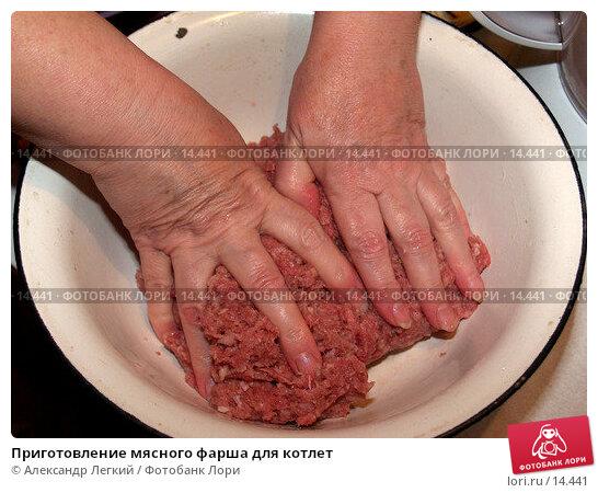 Приготовление мясного фарша для котлет, фото № 14441, снято 12 декабря 2006 г. (c) Александр Легкий / Фотобанк Лори