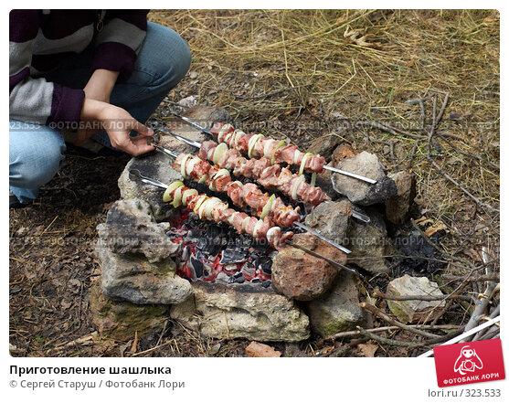 Приготовление шашлыка, фото № 323533, снято 15 июня 2008 г. (c) Сергей Старуш / Фотобанк Лори