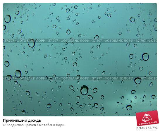Купить «Прилипший дождь», фото № 37797, снято 11 июня 2006 г. (c) Владислав Грачев / Фотобанк Лори