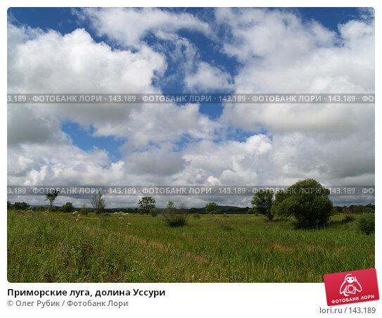 Приморские луга, долина Уссури, фото № 143189, снято 2 августа 2007 г. (c) Олег Рубик / Фотобанк Лори