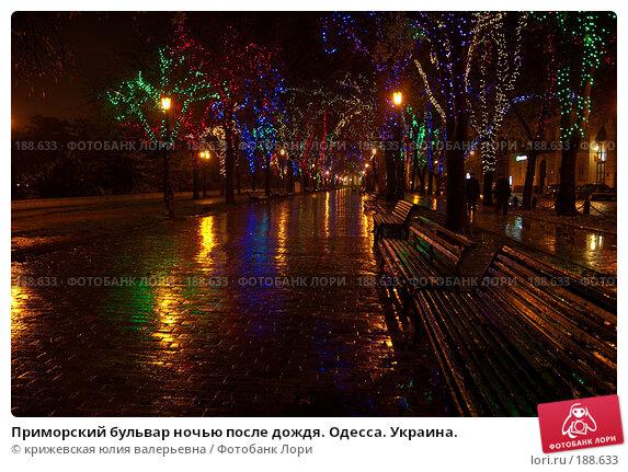 Купить «Приморский бульвар ночью после дождя. Одесса. Украина.», фото № 188633, снято 1 ноября 2007 г. (c) крижевская юлия валерьевна / Фотобанк Лори