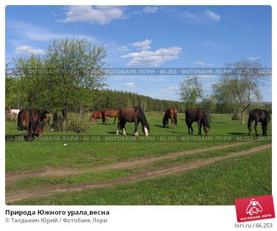 Природа Южного урала,весна, фото № 66253, снято 20 мая 2007 г. (c) Талдыкин Юрий / Фотобанк Лори