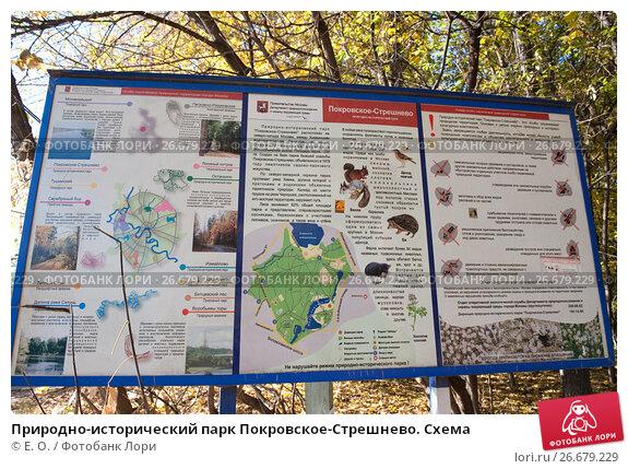 Схема парка покровское-стрешнево