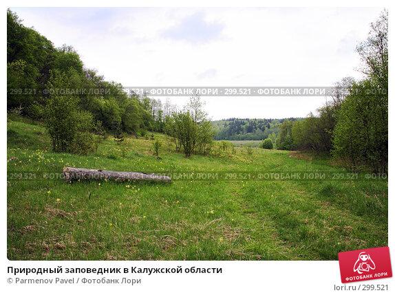Природный заповедник в Калужской области, фото № 299521, снято 10 мая 2008 г. (c) Parmenov Pavel / Фотобанк Лори