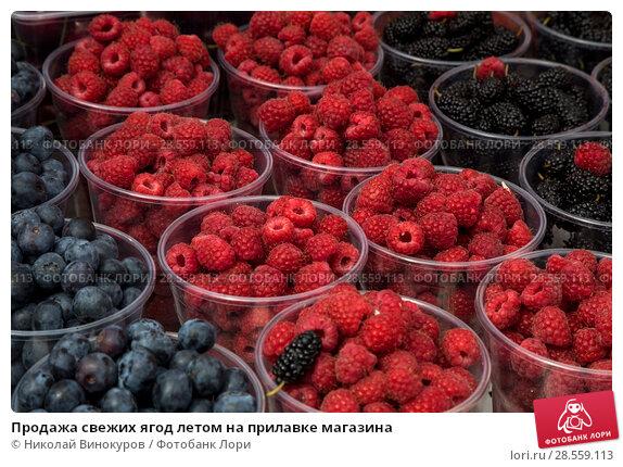 Купить «Продажа свежих ягод летом на прилавке магазина», фото № 28559113, снято 11 июня 2018 г. (c) Николай Винокуров / Фотобанк Лори