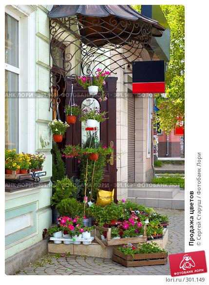 Продажа цветов, фото № 301149, снято 26 апреля 2008 г. (c) Сергей Старуш / Фотобанк Лори
