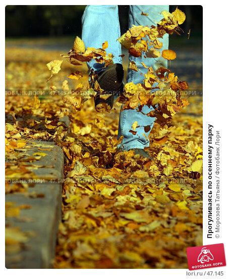 Прогуливаясь по осеннему парку, фото № 47145, снято 3 октября 2005 г. (c) Морозова Татьяна / Фотобанк Лори