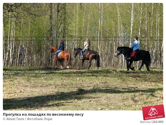 Прогулка на лошадях по весеннему лесу, эксклюзивное фото № 264889, снято 27 апреля 2008 г. (c) Alexei Tavix / Фотобанк Лори