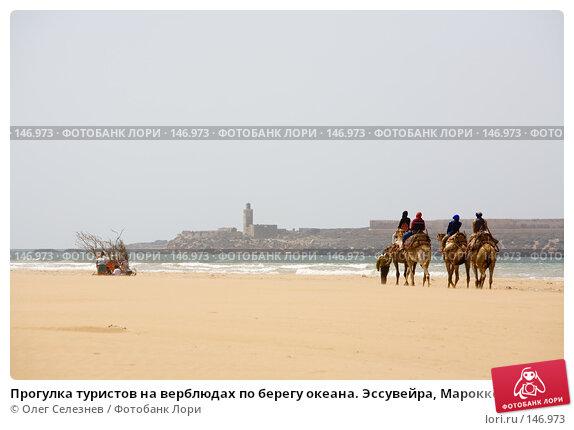 Прогулка туристов на верблюдах по берегу океана. Эссувейра, Марокко., фото № 146973, снято 1 августа 2007 г. (c) Олег Селезнев / Фотобанк Лори