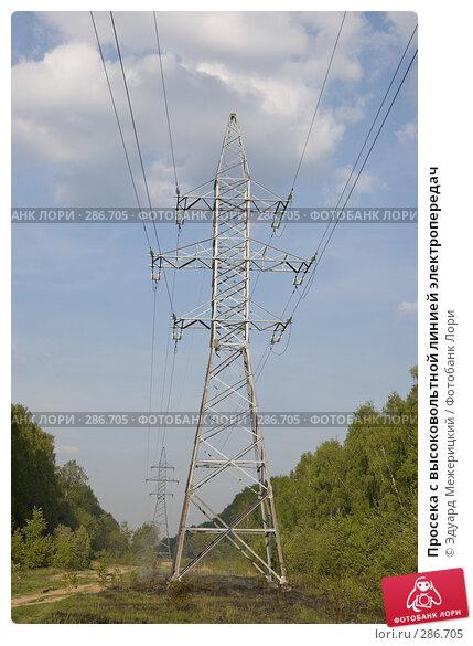 Просека с высоковольтной линией электропередач, фото № 286705, снято 12 мая 2008 г. (c) Эдуард Межерицкий / Фотобанк Лори