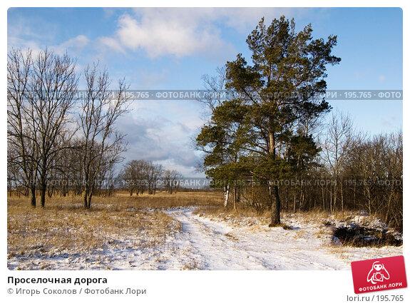 Проселочная дорога, фото № 195765, снято 3 февраля 2008 г. (c) Игорь Соколов / Фотобанк Лори