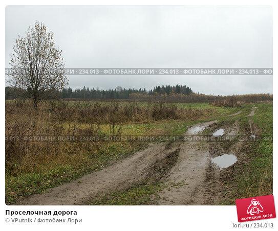 Проселочная дорога, фото № 234013, снято 25 октября 2004 г. (c) VPutnik / Фотобанк Лори
