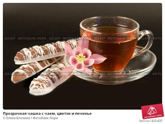 Прозрачная чашка с чаем, цветок и печенье, фото № 323637, снято 7 июня 2008 г. (c) Елена Блохина / Фотобанк Лори
