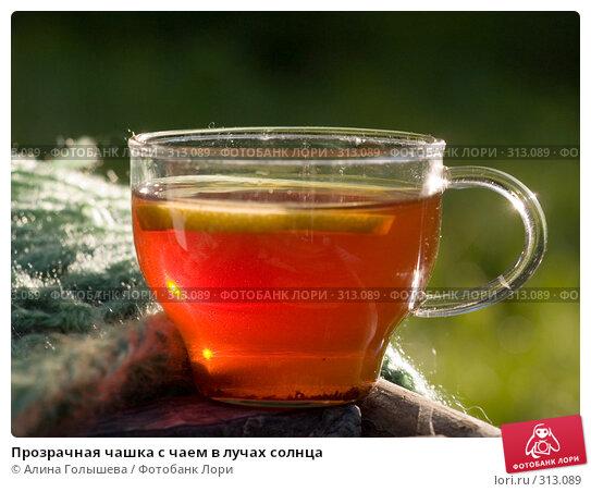 Купить «Прозрачная чашка с чаем в лучах солнца», эксклюзивное фото № 313089, снято 5 июня 2008 г. (c) Алина Голышева / Фотобанк Лори